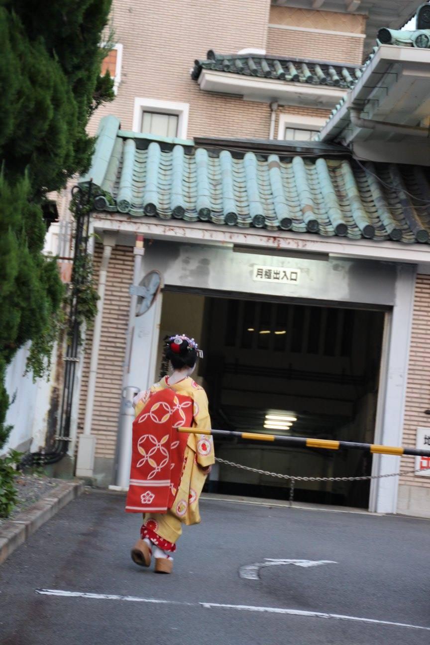 My first Geisha spotting