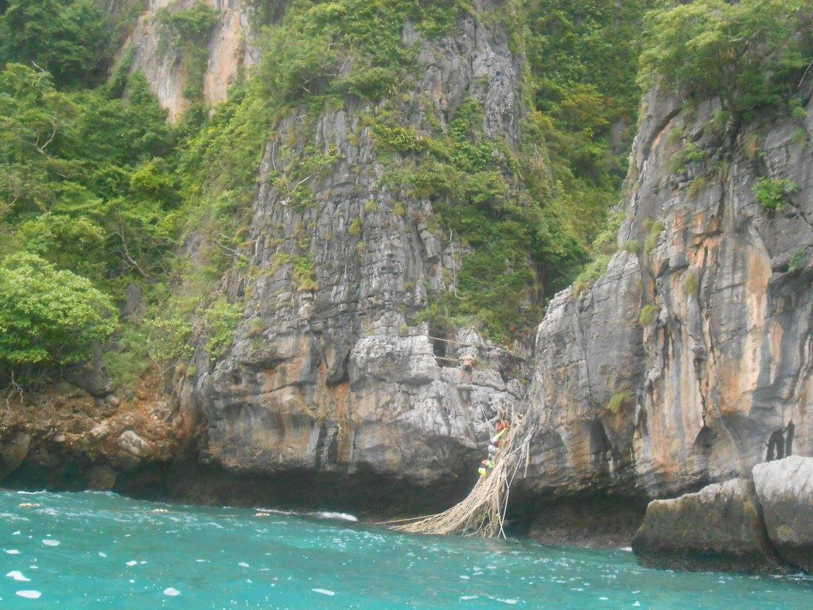 The rope 'ladder' at Maya bay